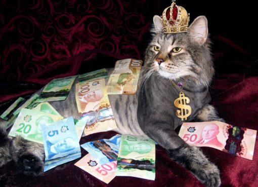 cat canadian money | EconAlerts